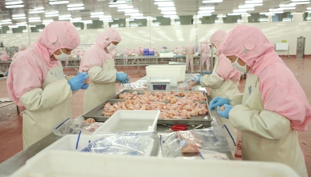 chicken-processing floor, OSI Group Poultry Development Co.