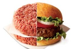 cardinal revolution burger