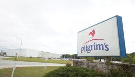 Pilgrim's pride sign