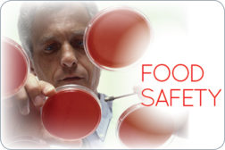 Food Safety Column Logo