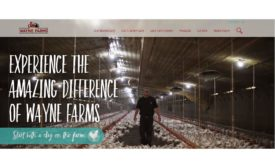 Wayne Farms website