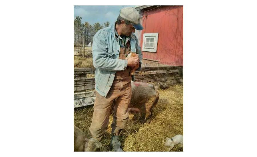 Niman Ranch hog farmer of the year