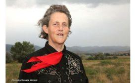 AMSA Temple Grandin