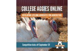 Animal Ag Alliance College Aggies Online scholarship
