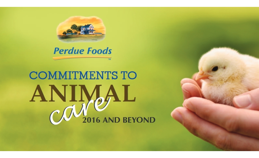 perdue animal care news