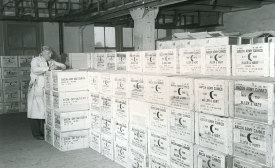 Supplies of canned meat for the army