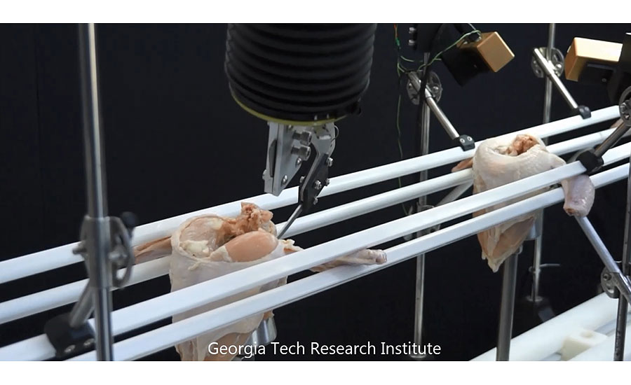 A robotic poultry deboning system developed by Georgia Tech Research Institute