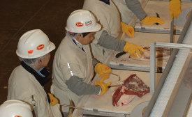 This May 2006 photo shows the expansion and renovation of Tyson Foods' Dakota City, Neb., processing floor