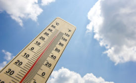 High temperatures can result in stress, high mortality rates, and decreased feed intake in birds