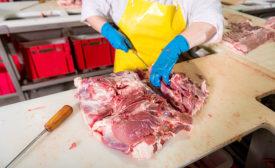 An employee wears sanitized apparel in a meat plant
