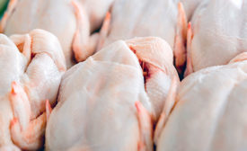 Raw Poultry Carcasses