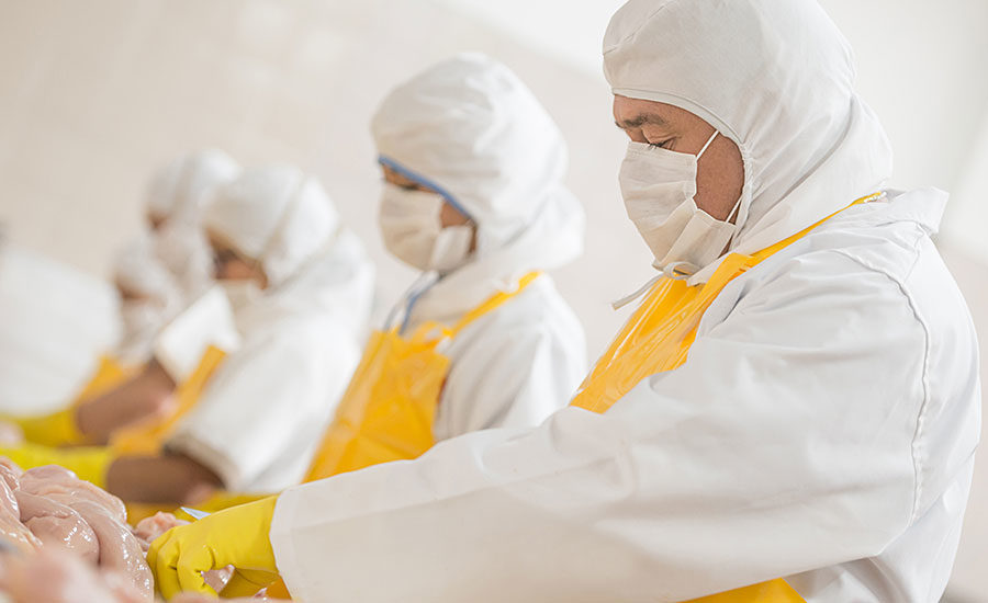 Worker Safety In Meat And Poultry Processing A Team