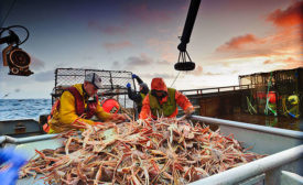 King Crab Fishermen