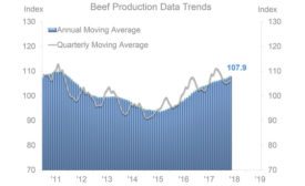 Beef Production Data Trends 2011-2019