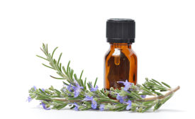 Rosemary Sprig and Essential Oil