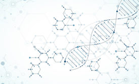 DNA Engineering