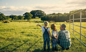 Father and Two Daughters Looking at Field of Cattle