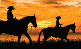 Silhouette of Adult and Child Horseback Riding at Sunset