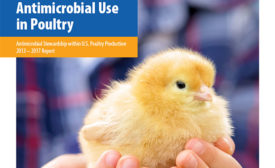 U.S. Poultry & Egg Association Antimicrobial Use in Poultry Report