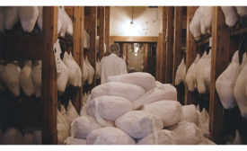 ham warehouse