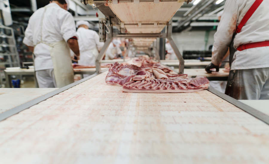 meat processing with conveyor belts