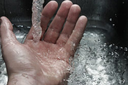 food safety, hand washing, sanitation