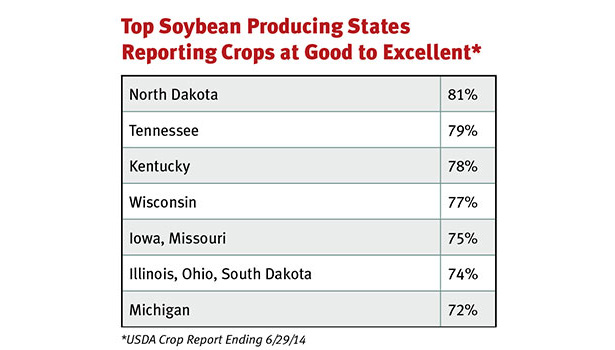 soybean producers chart
