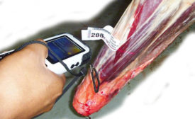 Inventory employees can view animal identification information, the type of cut, the weight, and the date and time of each scan, directly on the Nautiz X3