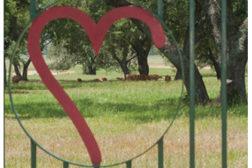 HeartBrand beef gate