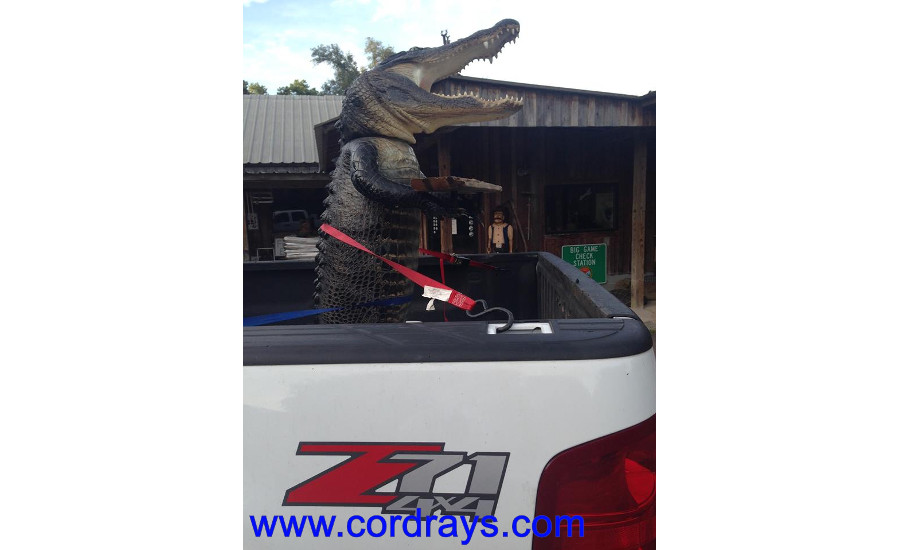 An alligator statue standing up in a truck