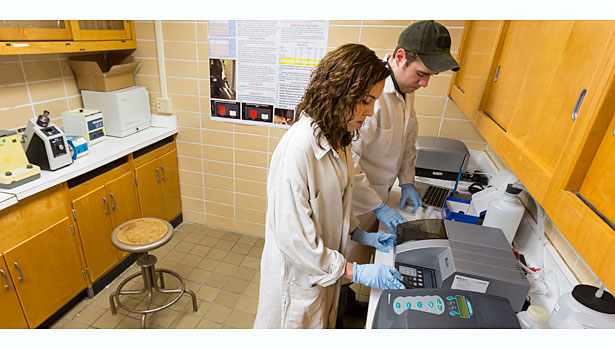 animal welfare, University of Wisconsin river falls, meat lab