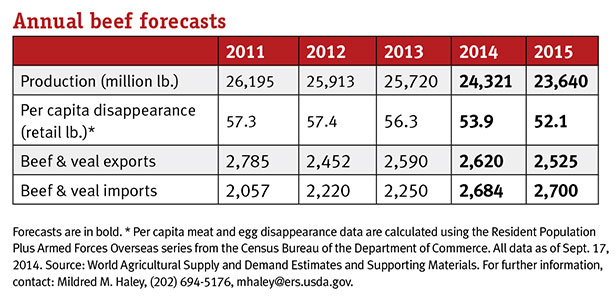 annual beef forecasts