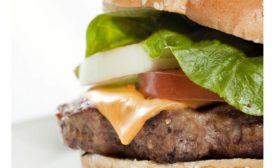 Kemin Burger