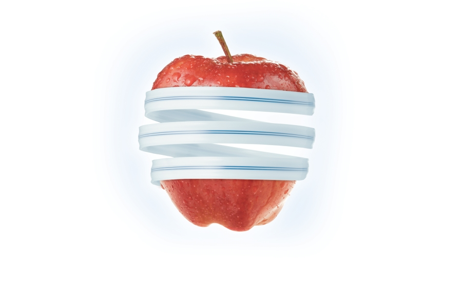 Apple Zipper Art_Cropped 900.jpg