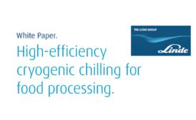 Linde - Cryogenic Chilling for Food Processing white paper 900.jpg