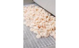 Linde - IQF Shrimp exiting CRYOLINE freezer 900.jpg