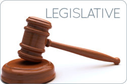 Regulation Legislative