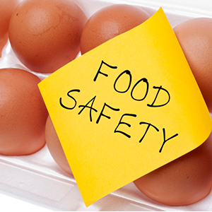 Eggs food safety