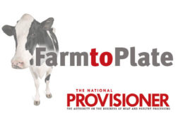 Farm to Plate, cow