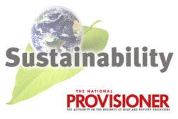 Sustainability, earth, leaf